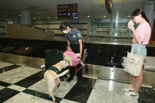 防範非洲豬瘟 花蓮機場查獲肉鬆罰20萬 | 華視新聞