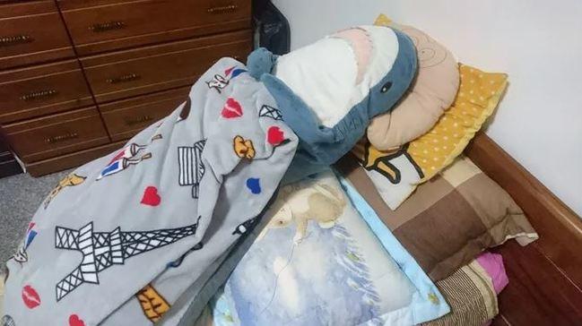 療癒系玩偶! IKEA鯊魚洗個澡竟身材走樣 啤酒肚萌翻網友 | 華視新聞