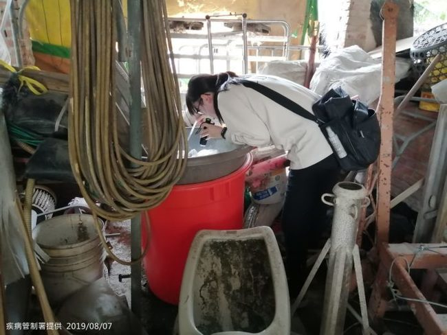 台南再添1例本土登革熱!三度就醫二次採檢確診 | 華視新聞