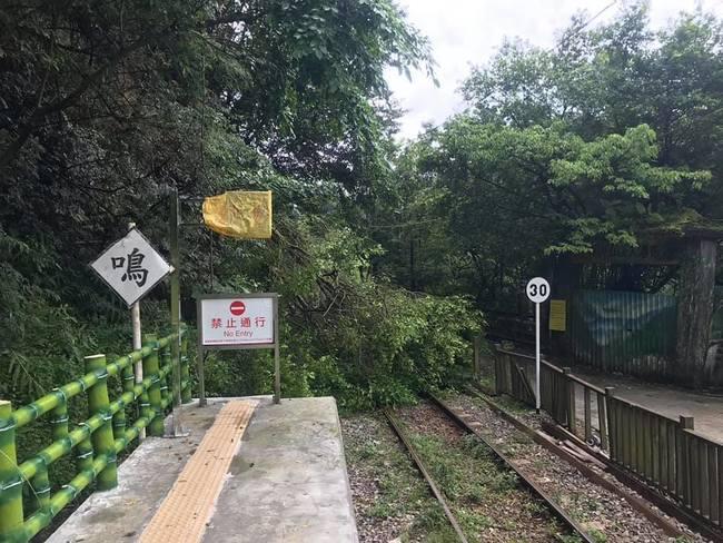 平溪線路樹倒塌 十分至菁桐改由公車接送   華視新聞