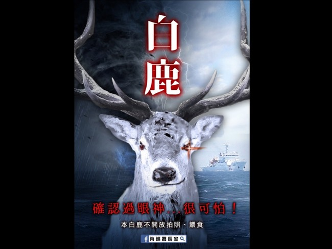 「白鹿」向台灣大步奔來!海巡署創意發文引熱議   華視新聞
