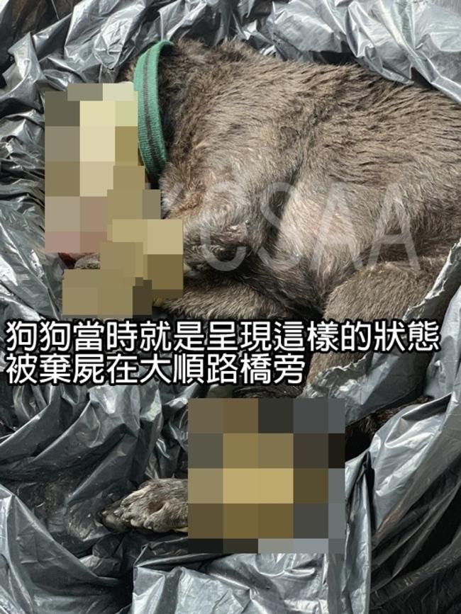 小黑狗遭膠帶綑綁虐殺 網友堵凶手怒討道歉 | 華視新聞