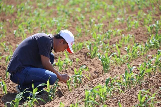老農津貼2月調升至7550元 約59萬人受惠 | 華視新聞