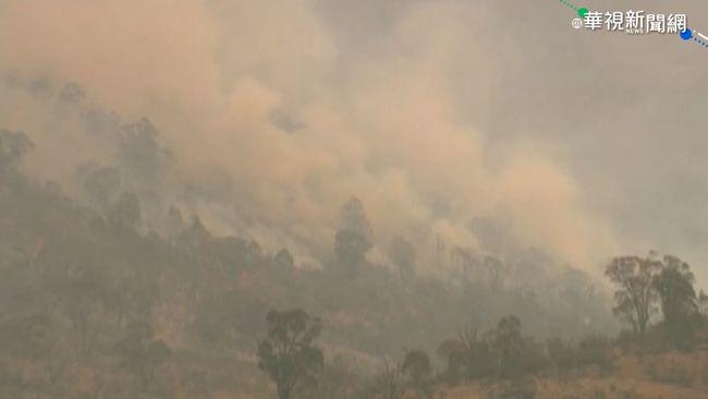 野火逼近 澳洲首都進入緊急狀態   華視新聞