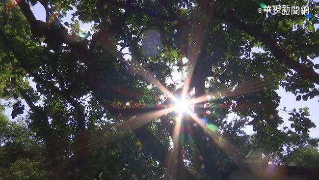 太陽露臉! 寒流減弱氣溫回升 好天氣持續到「這天」 | 華視新聞