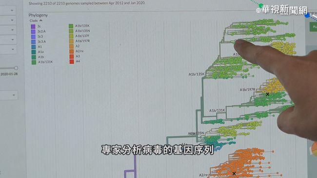 全球第4!台灣分離病毒株助研發疫苗 | 華視新聞