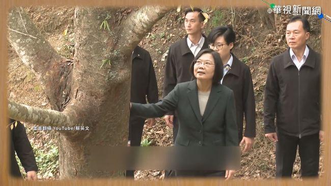 總統訪「台灣樹王」 親種牛樟樹 | 華視新聞