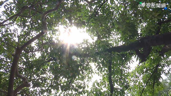 氣溫持續回升上看29度 西半部留意空汙「橘色提醒」   華視新聞