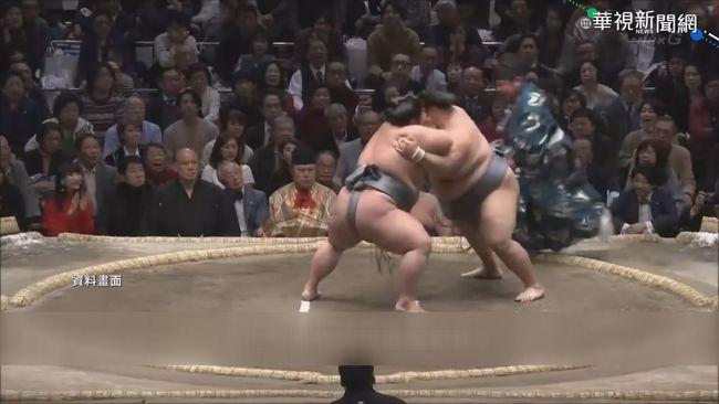 日延緊急事態 5月相撲大賽取消了! | 華視新聞