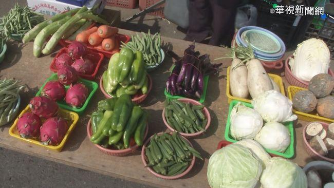 豪雨後蔬菜量減價漲? 農糧署:仍在合理範圍內   華視新聞