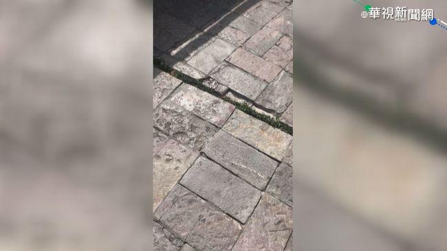 墨西哥7.4強震至少4死 發布海嘯警報   華視新聞