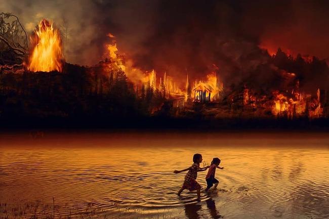 亞馬遜雨林7月爆6803起大火 巴西總統:都是謊言   華視新聞