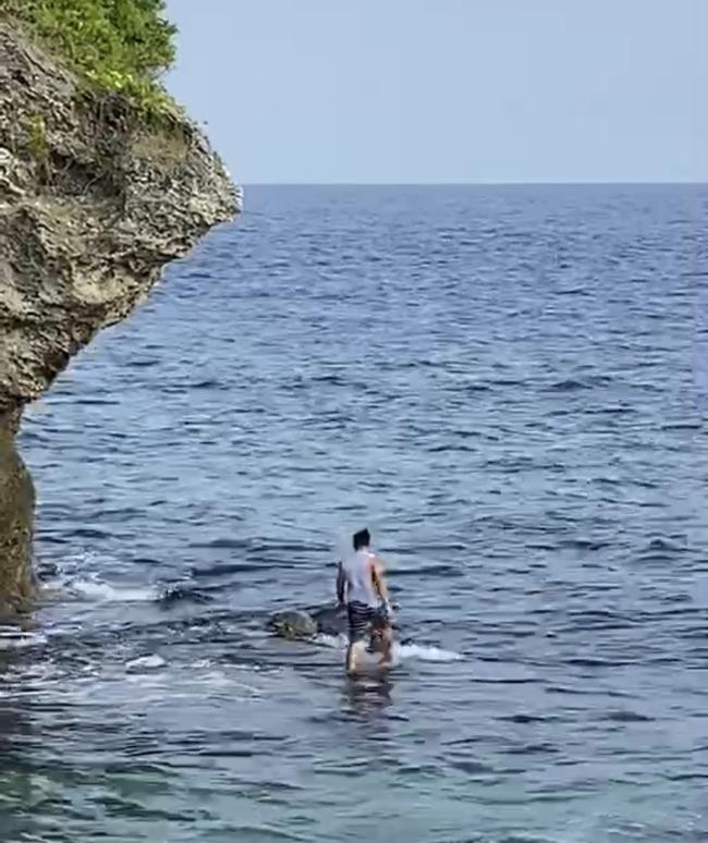 菲籍移工遊小琉球「強抱海龜」!下場最高罰30萬   華視新聞