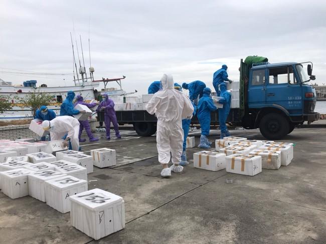 澎湖漁船走私1344公斤大閘蟹 5船員需自主健康管理 | 華視新聞