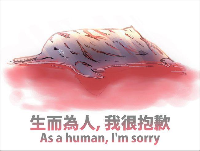 印度殘忍虐殺海豚 海委會:生而為人,我很抱歉   華視新聞
