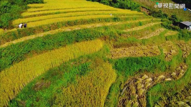 北迴歸線穿越 緬甸天然資源豐富! | 華視新聞