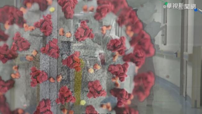 新冠病毒從哪來? 世衛公布調查結果 | 華視新聞