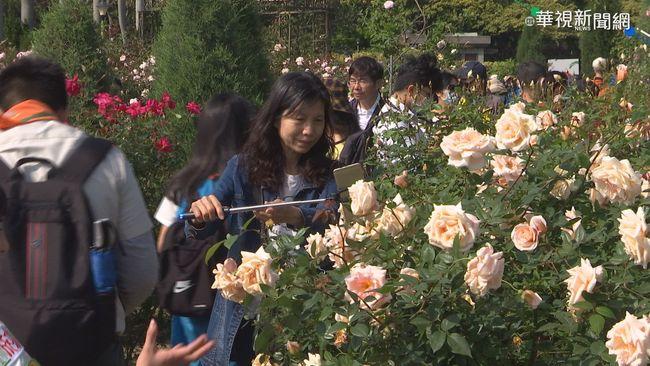 花博新生園區700種玫瑰 德日品種驚艷!   華視新聞