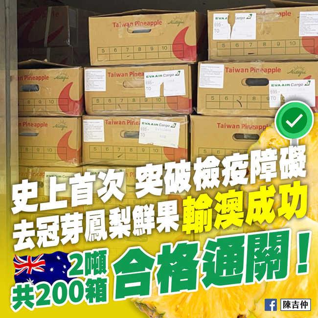 台灣鳳梨成功外銷澳洲 農委會:出口前已被預購一空   華視新聞