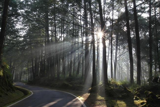 國際護師節 14處國家森林遊樂區限時5天免費玩 | 華視新聞