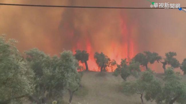 希臘森林大火 出動270警消.16軍機救火 | 華視新聞