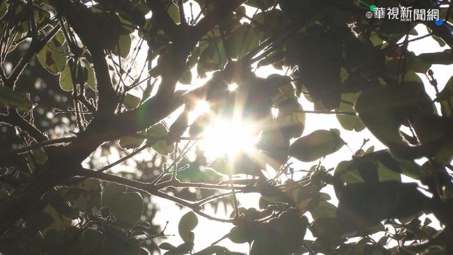全台高溫橘黃燈 滯留鋒接近「明起變天」嚴防強降雨 | 華視新聞