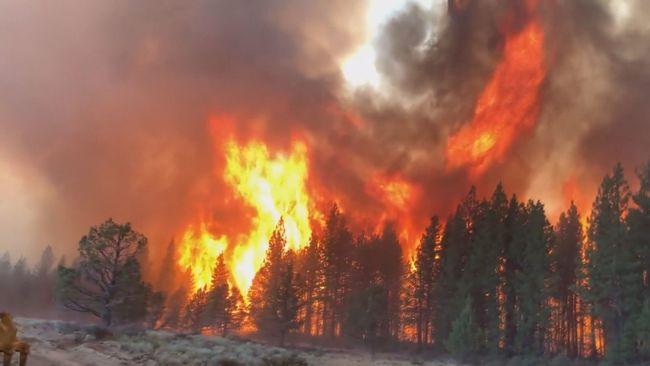 全美80場森林野火狂燒 2千居民急撤離 | 華視新聞