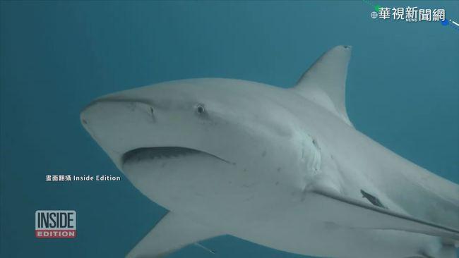 男騎水上摩托車觀看 激怒鯊魚遭攻擊 | 華視新聞